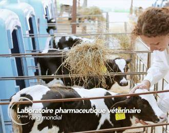 Vétoquinol : Laboratoire pharmaceutique vétérinaire